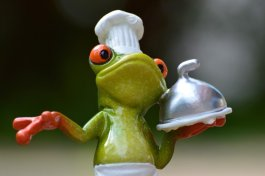 frog-cooking-eat-kitchen-gourmet-food-preparation