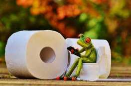 frog-toilet-loo-session-funny-toilet-paper-wc-1